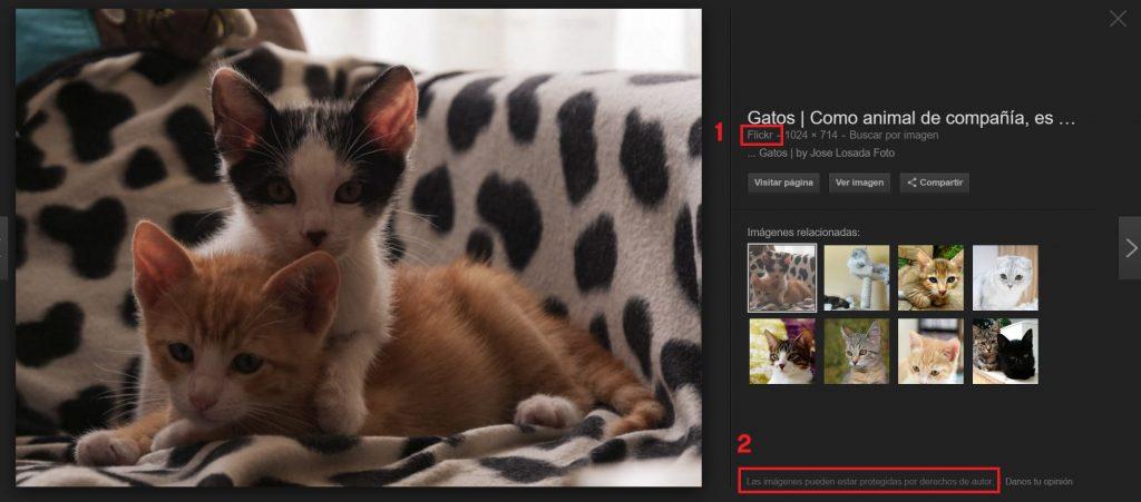 imagenes protegidas derechos autor google